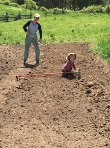 Amy and Owen preparing the new herb garden.
