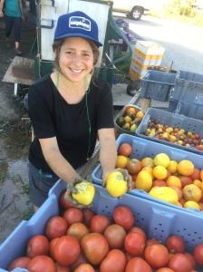 Sarah admiring tomato varieties